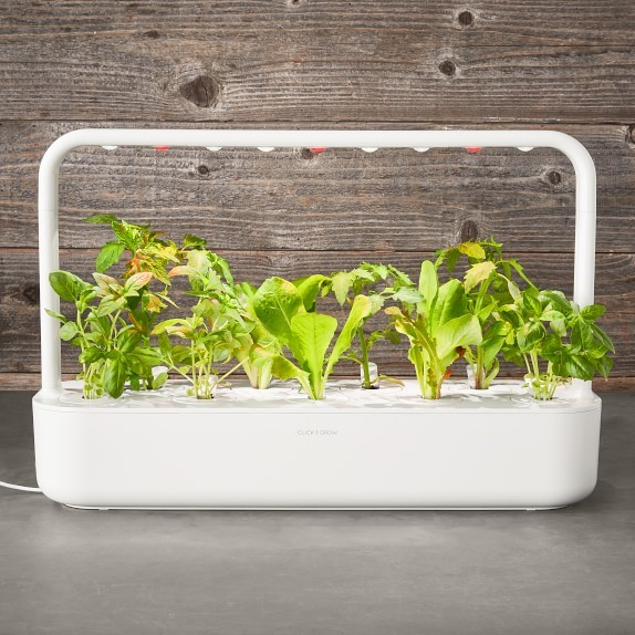 Click and Grow Smart Garden, 9-Pod | Williams Sonoma
